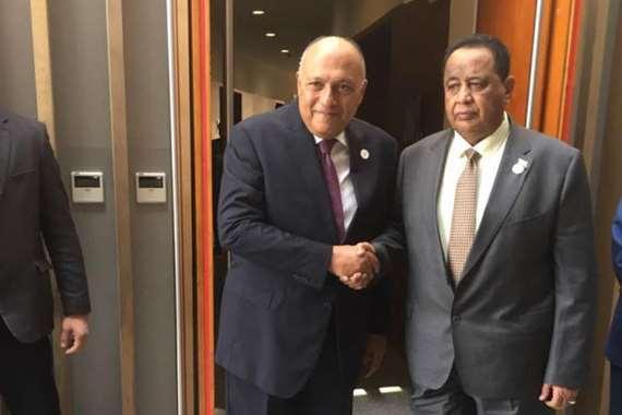 سامح شكري وزير الخارجية مع وزير الخارجية السوداني إبراهيم غندور