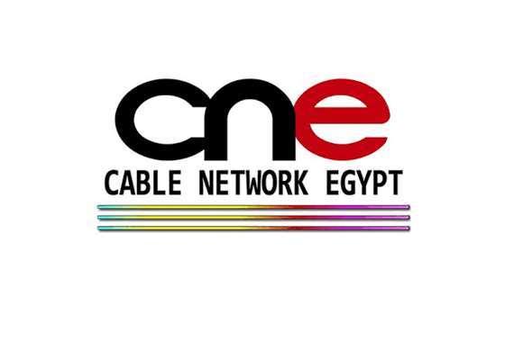 الشركة المصرية للقنوات الفضائية