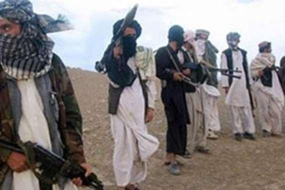 حركة طالبان ارشيفية