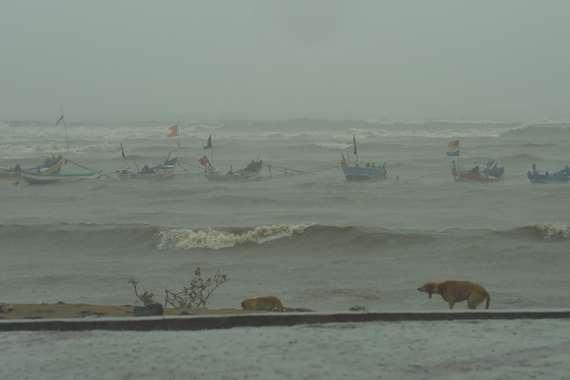 أمطار تغرق الشوارع فى الهند