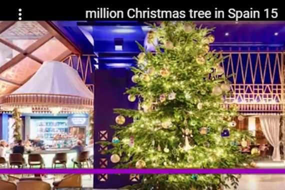 أغلى شجرة كريسماس