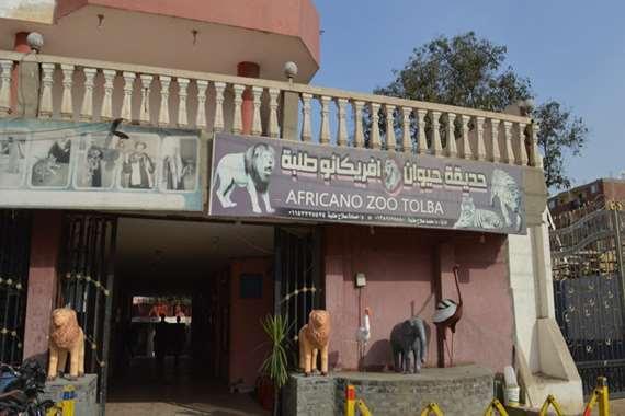 حديقة حيوان أفريكانو طلبة