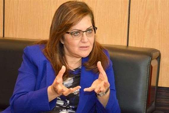 هالة السعيد، وزيرة الاستثمار