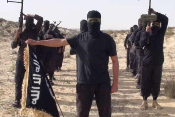 """تنظيم """"ولاية سيناء"""" الإرهابي"""