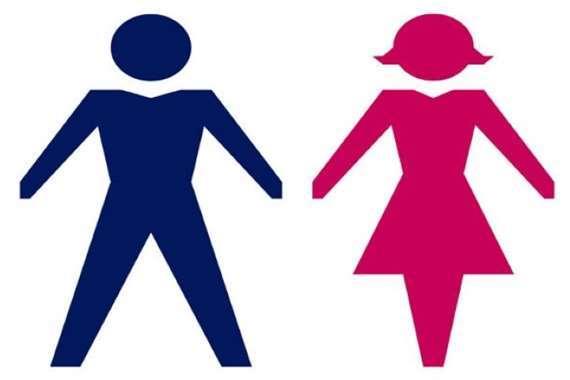 الذكور والإناث