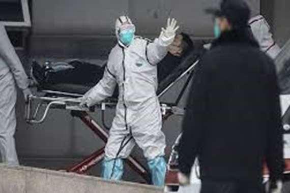 إعدام 12 ألف طائر.. فيروس جديد يضرب هذه الدولة
