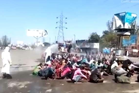 التعقيم في الهند