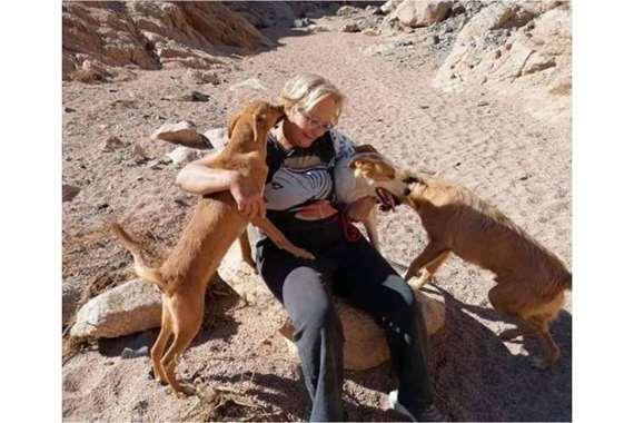 السيدة أثناء رعايتها الكلاب