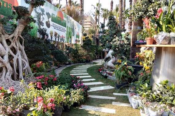 معرض الزهور السنوي بحديقة الأورمان
