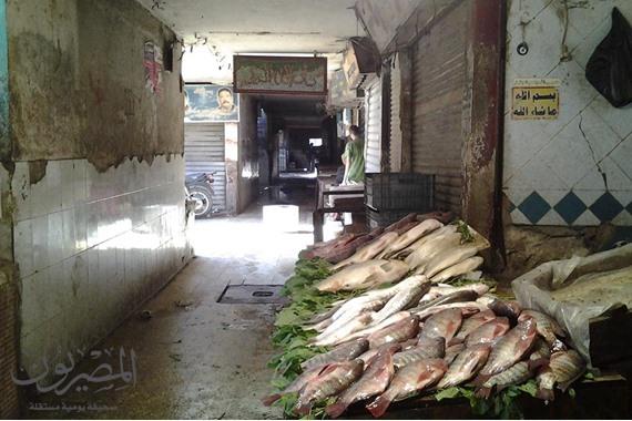 غلق محلات سمك