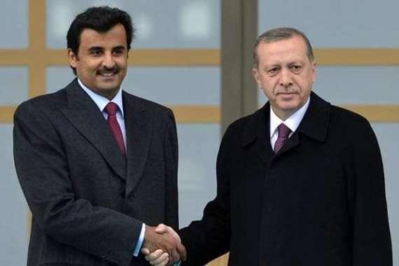 أردوغان و تميم