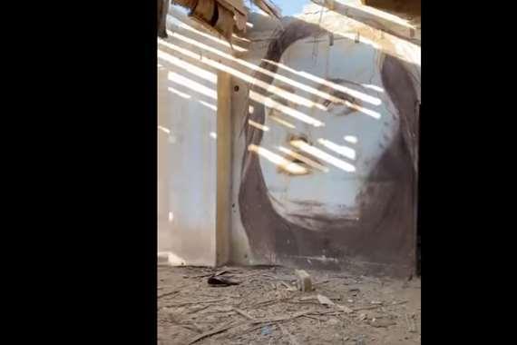 منزل مهجور يتزين بصور سيدات بالسعودية