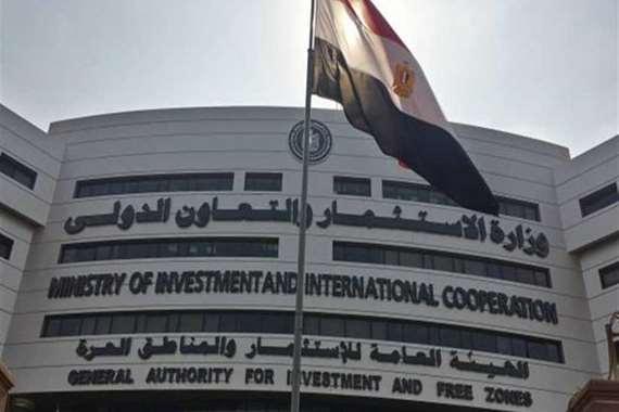 وزارة الاستثمار والتعاون الدولى