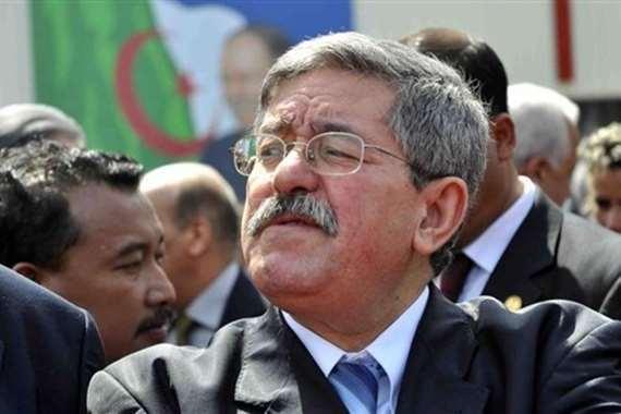 رئيس الوزراء الجزائر