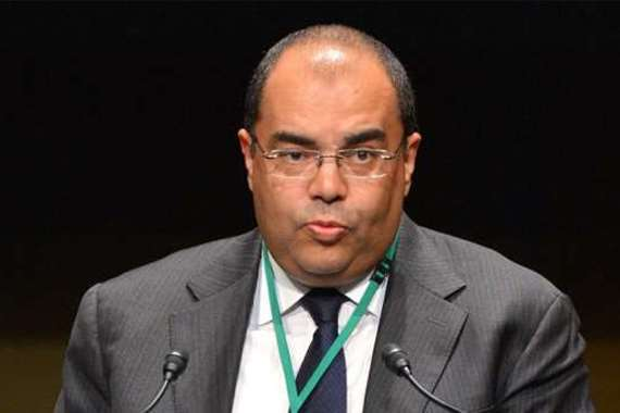 محمود محيى الدين