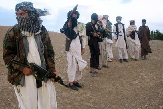 حركة طالبان