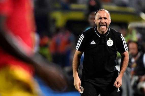 جمال بلماضي مدرب الجزائر