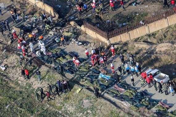 ضحايا الطائرة