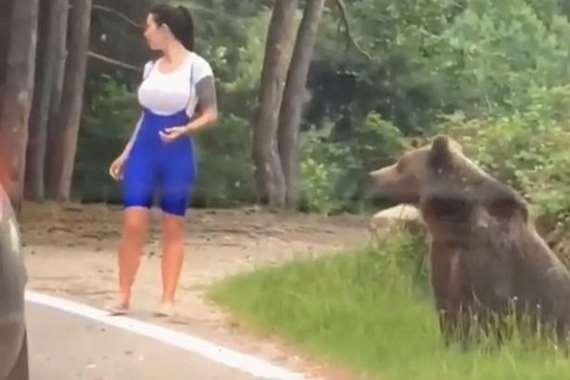 صورة مع الدب تنتهي بمأساة