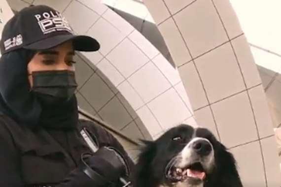 فيديو.. الإمارات تستخدم الكلاب للكشف عن فيروس كورونا