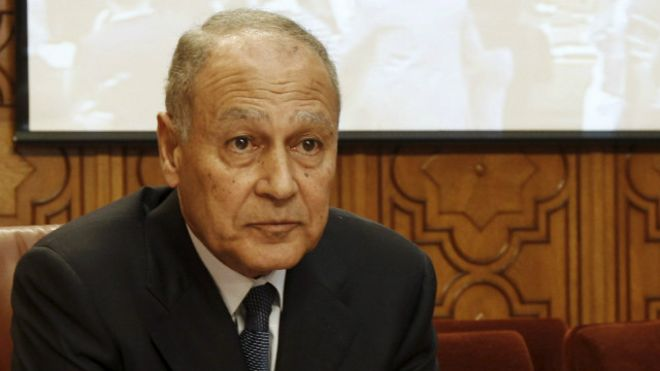 أمين الجامعة العربية يزور الكاتدرائية