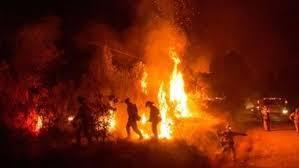 إخماد حريق هائل في دير القديسة دميانة بالدقهلية