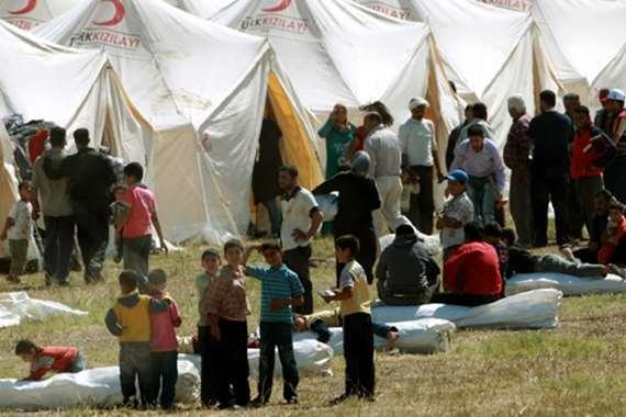 لاجئين فلسطنين