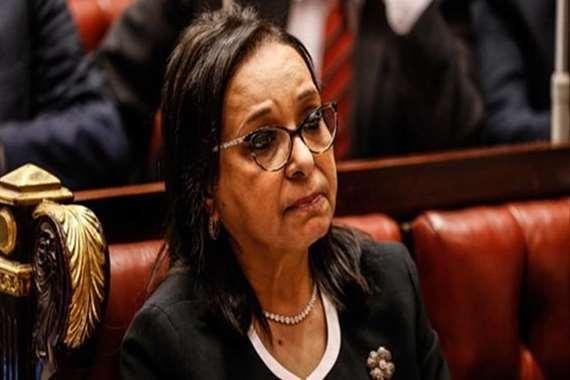أنيسة حسونة، عضو مجلس النواب
