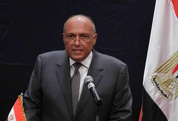 شكري: ندعم جهود تسوية الصراع بين فلسطين وإسرائيل
