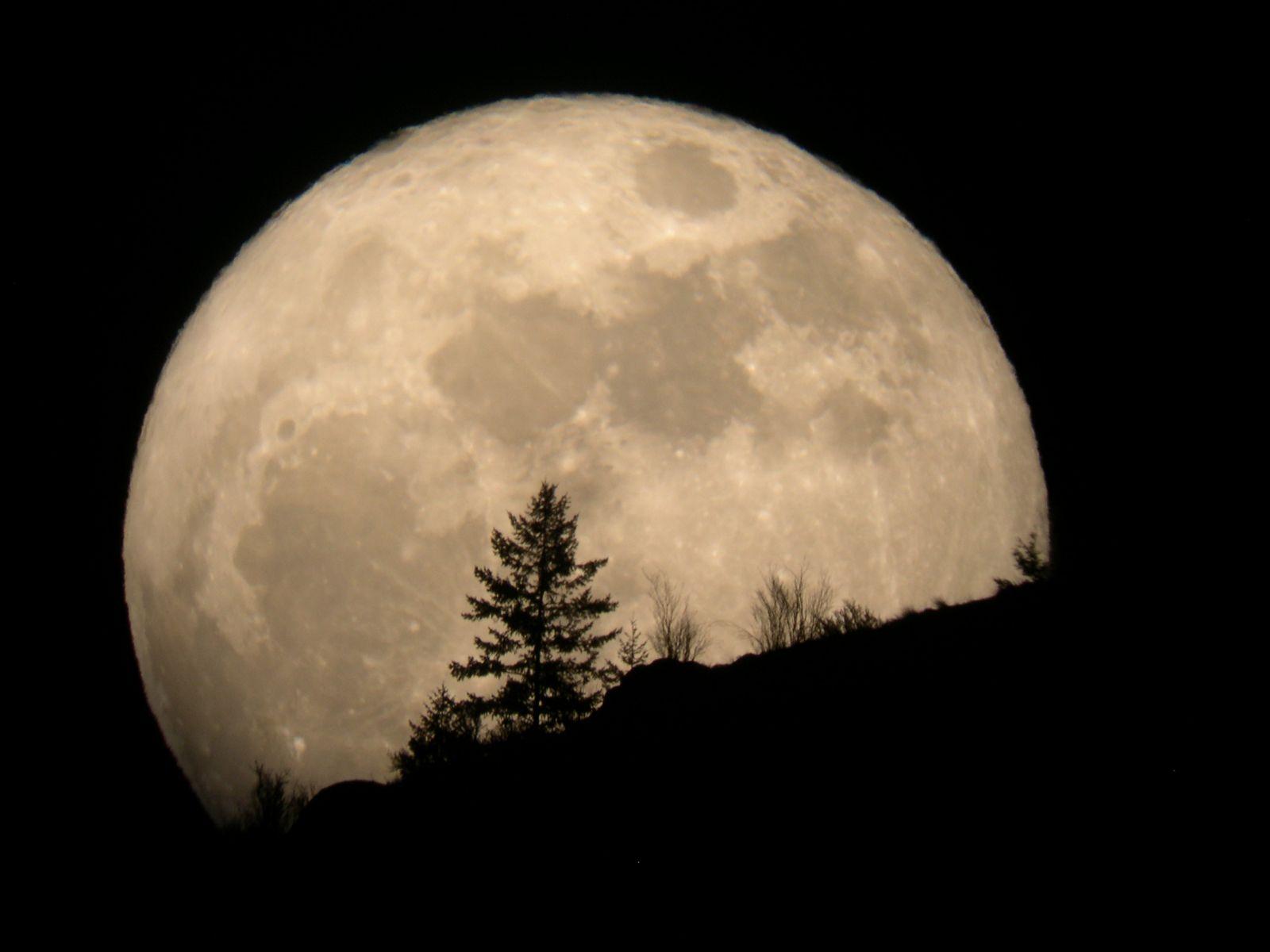 تعرف على أهمية القمر
